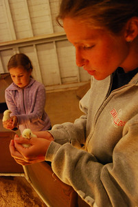 Sarah Steadman holds a baby chick at the fair.