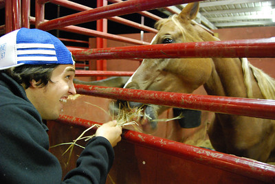Taylor Doolittle feeds a horse some hay at the fair.