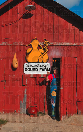 Tribune-Star/Joseph C. Garza<br /> You're welcome to come in: Helen Thomas welcomes gourd lovers from around the Wabash Valley to her farm in Howard in Parke County. Thomas will have her own Gourd Festival at her family's farm Oct. 9 and 10.