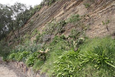 20091018 Bikeride down the Yarra