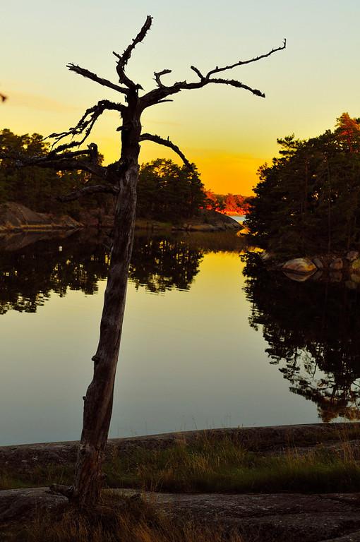 Stilla morgon i lagunen