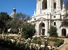 City Hall rose garden