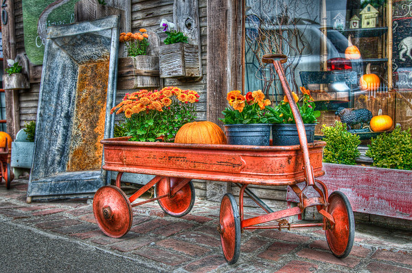 After driving from Menlo Park via Page Mill Road/Alpine Road we ended up in Pescadero. We parked and found a cute little antique store that had this cart out front. I couldn't help taking this photo!  I think I like the closer cropping better (see previous photo) but there's a nice little flower that I had to cut out, so I posted both versions.