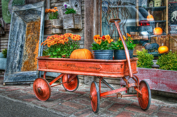 After driving from Menlo Park via Page Mill Road/Alpine Road we ended up in Pescadero. We parked and found a cute little antique store that had this cart out front. I couldn't help taking this photo!  I think I liked the closer cropping better (see next photo).