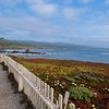 Pigeon Point fence