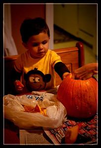Pumpkin Craving-41