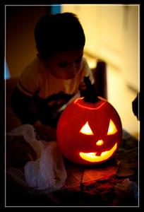 Pumpkin Craving-67