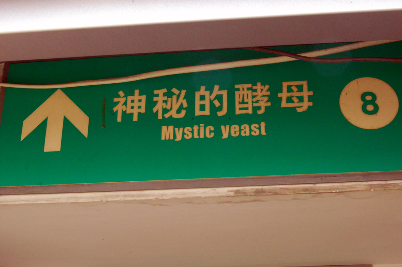 mystic yeast