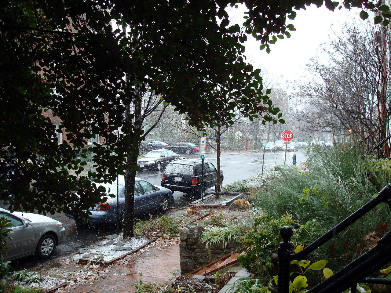 First snow of the season. Photo taken from the front of my abode.