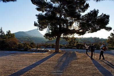 Sainte Victoire (13)