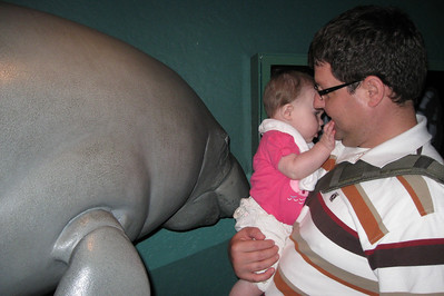 that manatee is a little too real looking! scary...