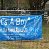 A blue banner announces the arrival of the latest addition to the alpaca flock at St. mary-of-the-Woods. A male cria was born to Providence Les Bois Giorgiana Wednesday at 12:03p.m.