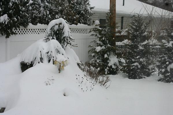 Snow Storm March09