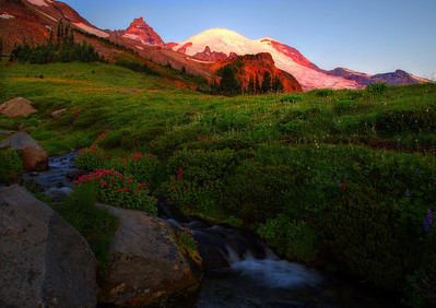 Sunrise on Mt. Rainier, Summerland
