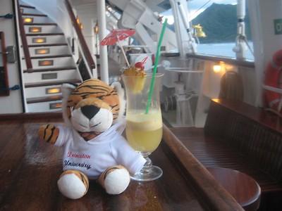 tiger and a pina colada - Andrew Gossen