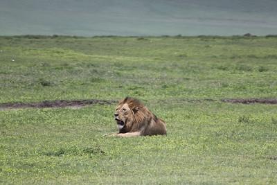 Tanzania - Robert McKay