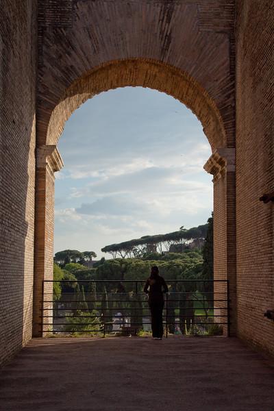 rome colosseum sham