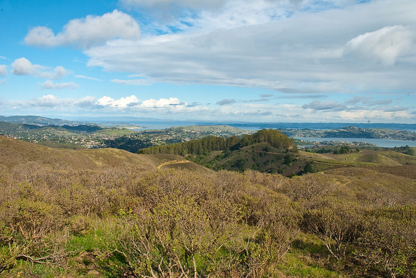 Looking towards Sausolito (spelling). Taken from the Tennessee Valley Trail in Marin.