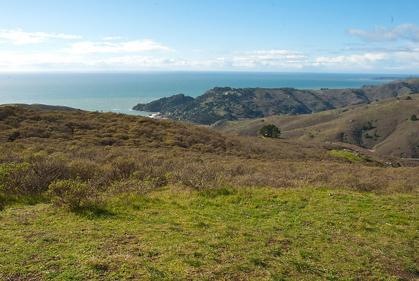 Pacific Ocean! Taken from the Tennessee Valley Trail in Marin