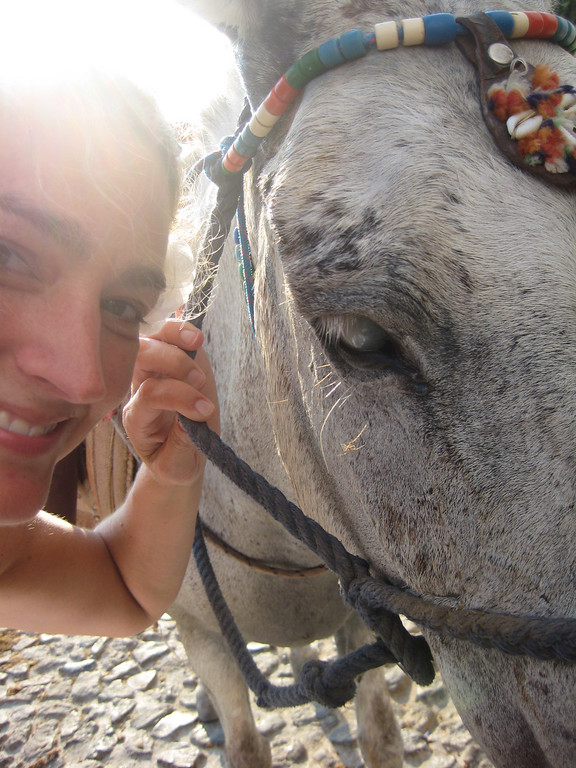 Courtney & Poppy (The Donkey)