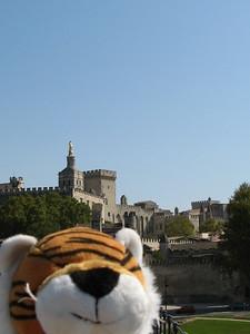 View of the Palais des Papes - Mibs Mara