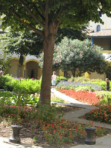 Arles Garden Painted by Van Gough - Mibs Mara