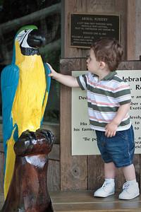 Touching a bird