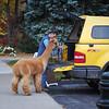 Loading the Alpaca