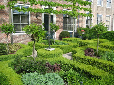 Garden in Dordrecht - Kaitlin Lutz