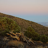 After sunset in the arid White Mountains