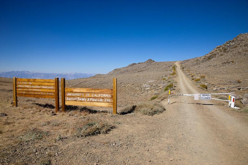 Start of the White Mountain trail