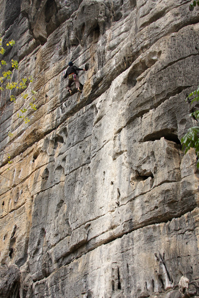 A massive limestone wall makes the climber look a little small on <i>Slack 5.10b</i>.