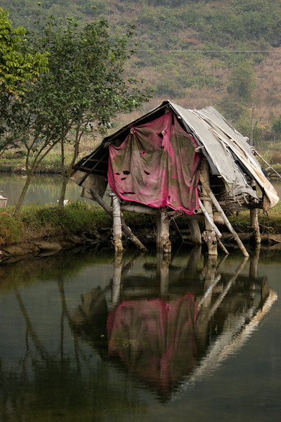 A small fish pond reflects a dilapidated shack along its edge.
