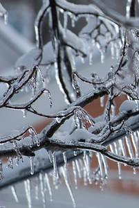 2009.1.28 - Ice Storm-14