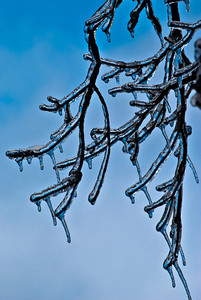 2009.1.28 - Ice Storm-9