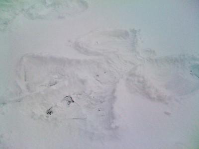 2009.1.28 - Ice Storm-2