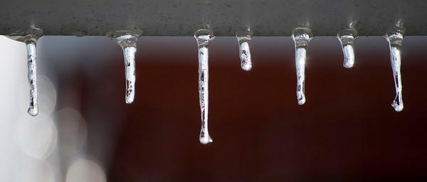 2009.1.28 - Ice Storm-21