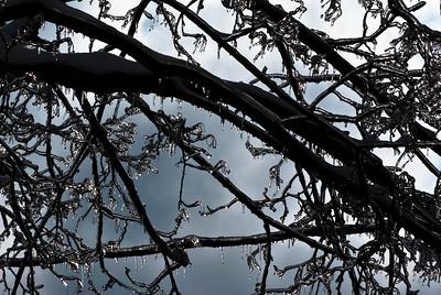2009.1.28 - Ice Storm-20