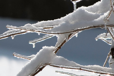 2009.1.28 - Ice Storm-19