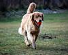 DSC_6248 Skylar Dec 1 2009