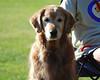 DSC_3781 Sasha Sept 5 2009
