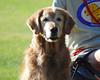 DSC_3782 Sasha Sept 5 2009