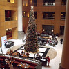 view of tree and lobby from meeting room level