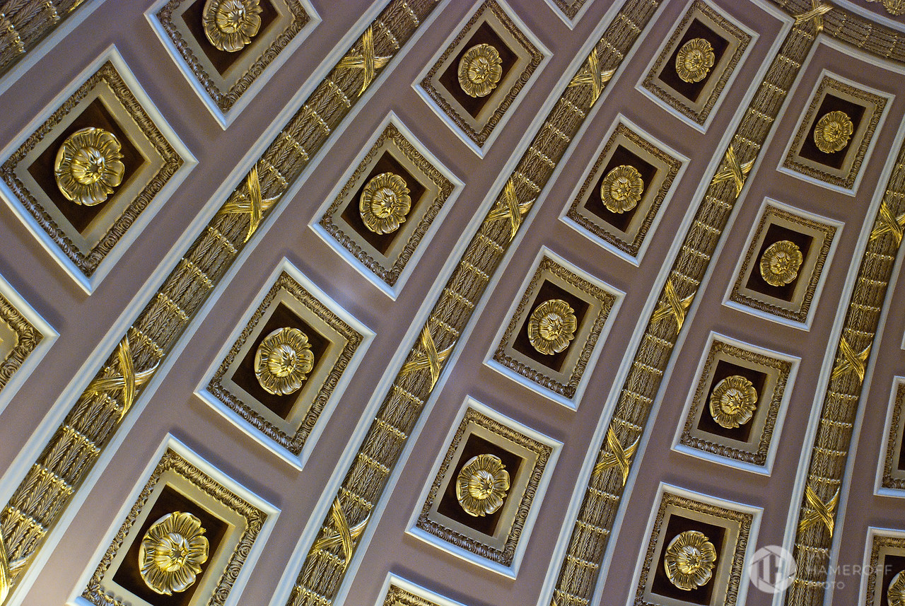 Looking Up at the Old Senate