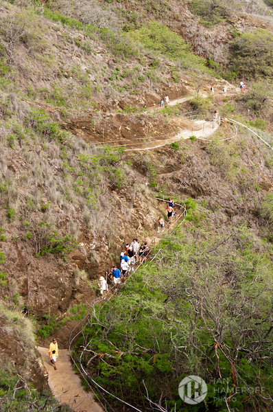 On the Diamond Head Trail