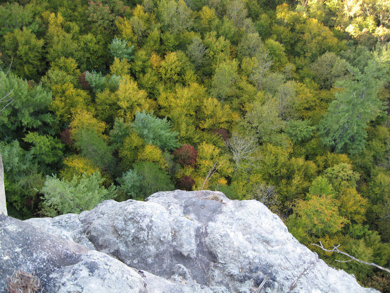 I was there at the front end of the fall foliage color change.  Colors had not yet peaked, but it nevertheless provided me with more colors than I'm used to seeing as I was rappelling into the treetops!