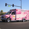 SWA Pink Ribbon Ford #481