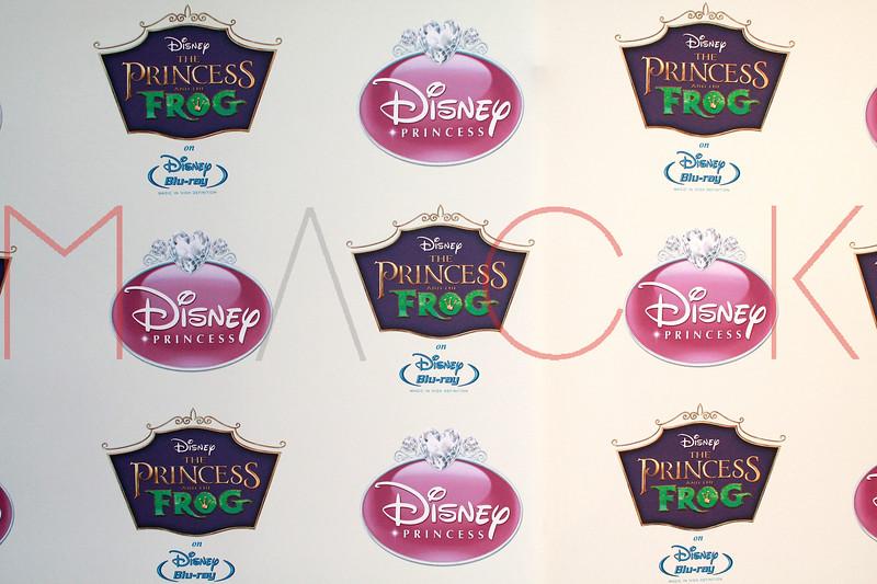 Disney Princess Royal Court, New York, USA