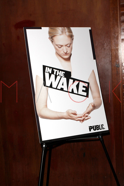 "opening night of ""In the Wake"", New York, USA"