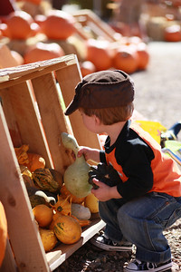 Luke loved collecting gourds